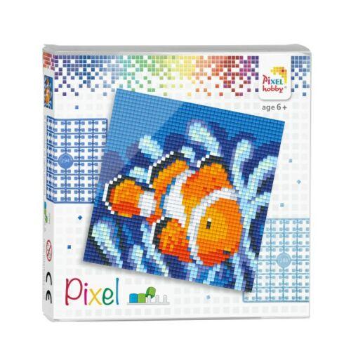 PXL-44004